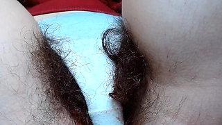 Super hairy Bush