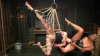 Black dominatrix is dominating tied up white lady