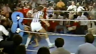 Battling Beauties -- Bert Rhine 1983