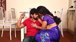 Hot aunty romance with driver